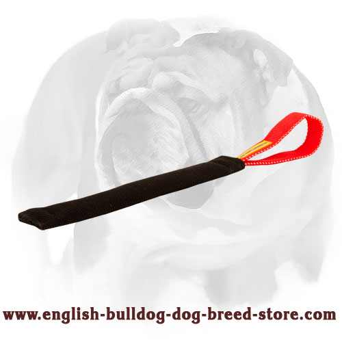 English Bulldog French Linen Tug for Puppy Bite Training