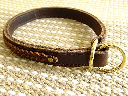 choke dog collar for english bulldog