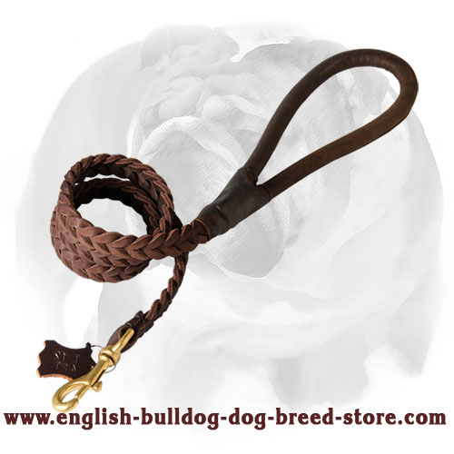 Leather dog leash with soft handle for English Bulldog
