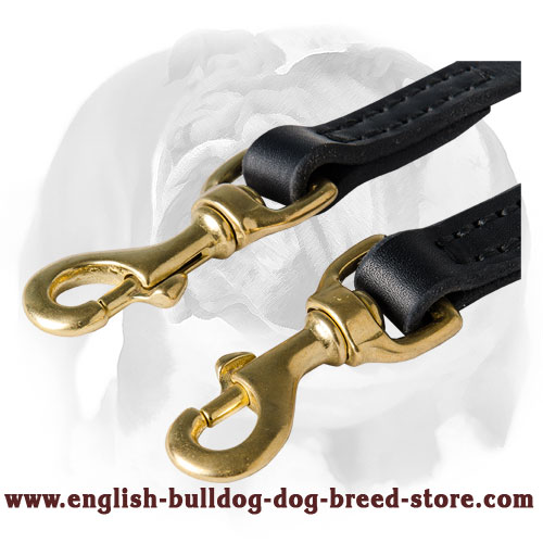 English Bulldog strong leather dog coupler for two dogs