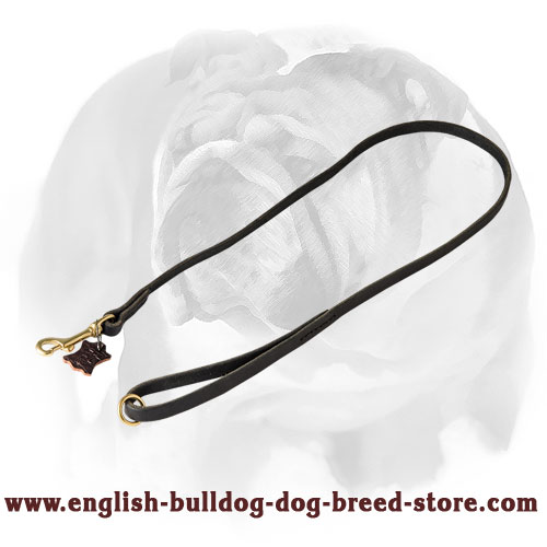English Bulldog leather leash with brass hardware