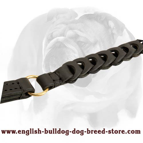 Smart braided dog lead for walking