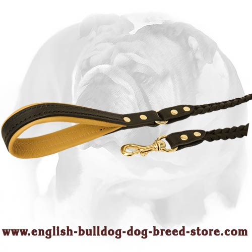 Smart braided dog lead