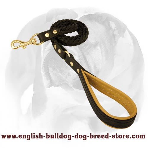 Walking dog lead