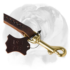 Lead for English Bulldog with brass snap hook
