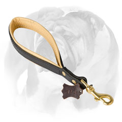 Short leather English Bulldog leash