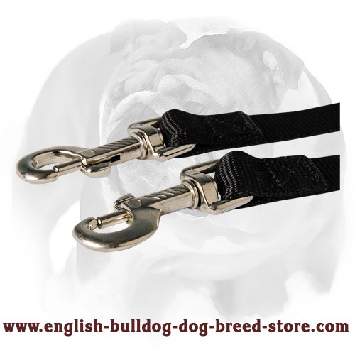 English Bulldog nylon dog coupler for two dogs
