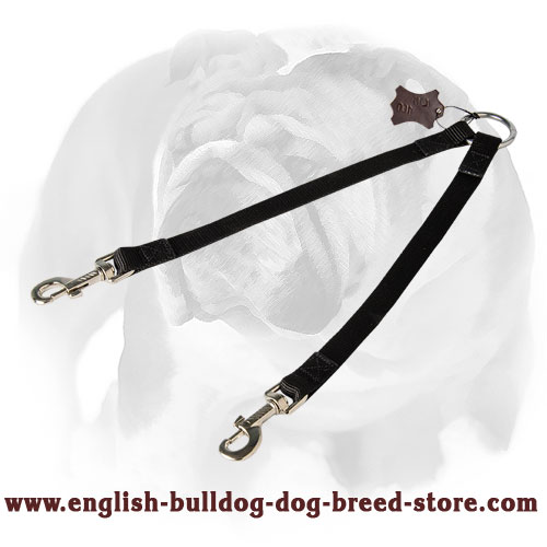 Short nylon dog coupler for English Bulldog