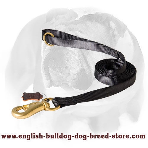 English Bulldog strong nylon leash for walking, tracking and training