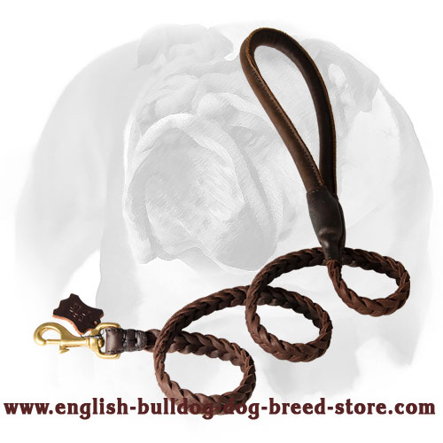 Rust-resistant hardware leather dog leash for English Bulldog