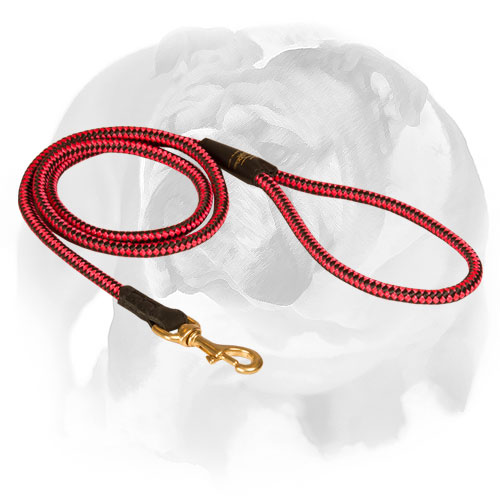 English Bulldog nylon cord leash for walking and training