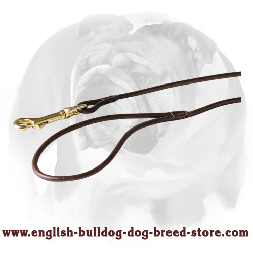 English Bulldog thin round leather dog leash with brass snap hook