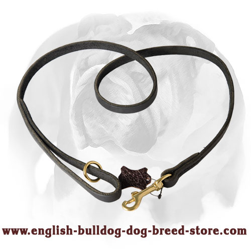 Leather dog leash with brass snap hook and O-ring for English Bulldog