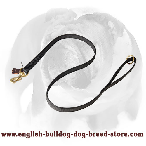 English Bulldog high-quality nylon dog leash
