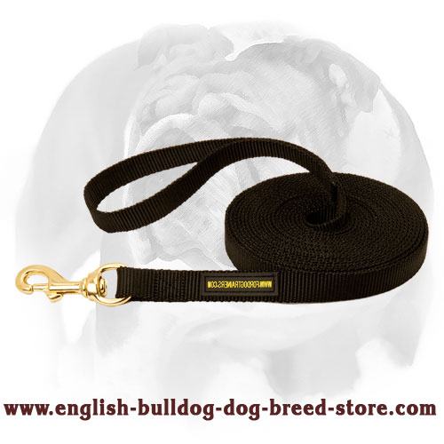 English Bulldog nylon leash for walking, tracking and training