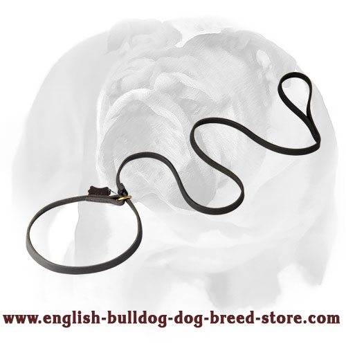 Leather dog leash with handle and choke collar for English Bulldog