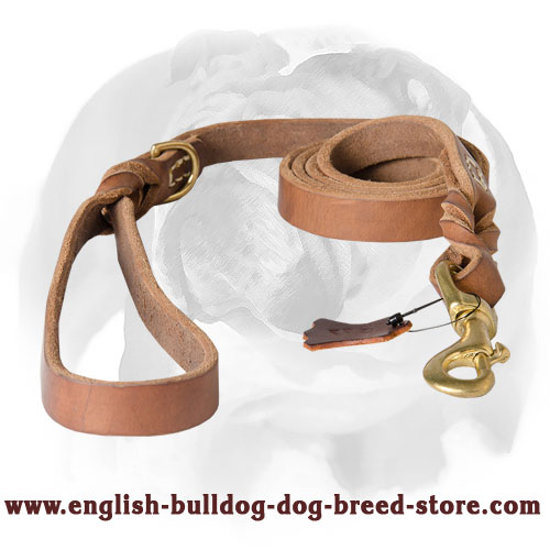 Leather dog leash with soft handle for English Bulldog breed