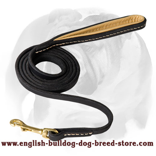 Leather dog leash with corrosion-free brass snap hook for English Bulldog