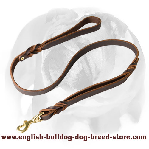 2 handles leather dog leash for English Bulldog