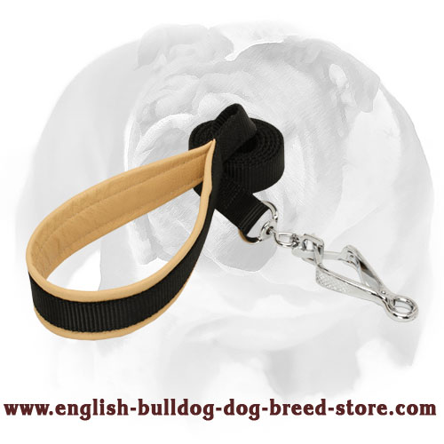 Strong nylon dog leash with HS snap hook for English Bulldog