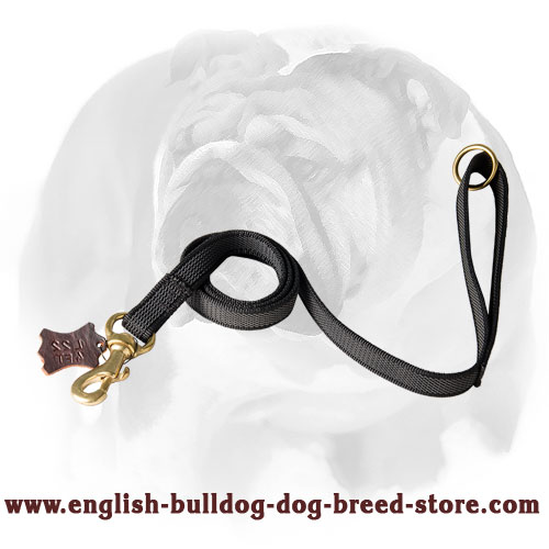 English Bulldog nylon dog leash for walking, training, patrolling