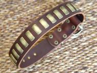english bulldog dog collar