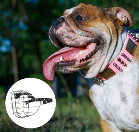 Purchasing the Right Dog Muzzle